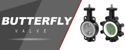 Butterfly-valve