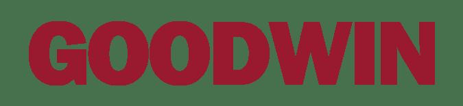 Goodwin-vietnam-logo-banner