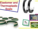 Elastomer-Thermoplastic-Seals