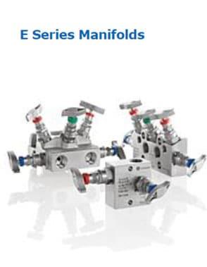 e-series-manifolds-as-schneider